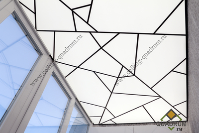 ceiling of Plexiglas with complex frame 2