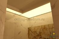 ceiling shower 4