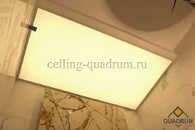ceiling shower 5